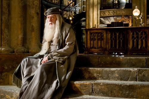 Если вы не фанат Гарри Поттера, запоминаем: Гарри хороший, Волан-де-Морт плохой. Дамблдор  духовный наставник хороше .... - Изображение 1