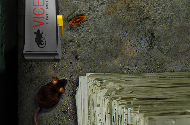 Симулятор Таракана Скачать Как - фото 11