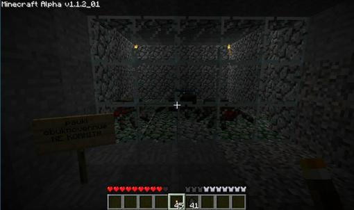 Всем привет! Скорее всего тут на Канобу больше половины пользователей играли в гипно-игру Minecraft и вам иногда хот ... - Изображение 2