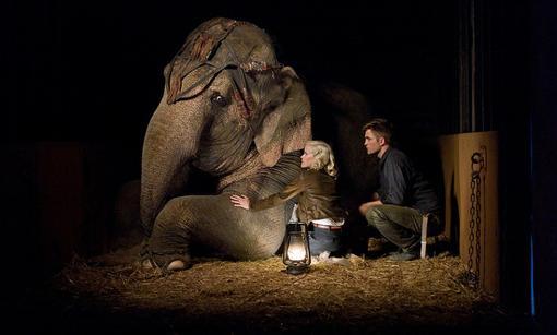 Экранизация романа Сары Груэн о ветеринаре польского происхождения, который однажды остаётся сиротой и попадает в ци ... - Изображение 1