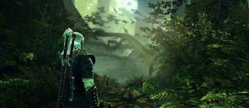 Студия CD Projekt сообщила о том, что сегодня должен выйти патч 1.1 для Ведьмака 2, который исправит основные пробле ... - Изображение 1