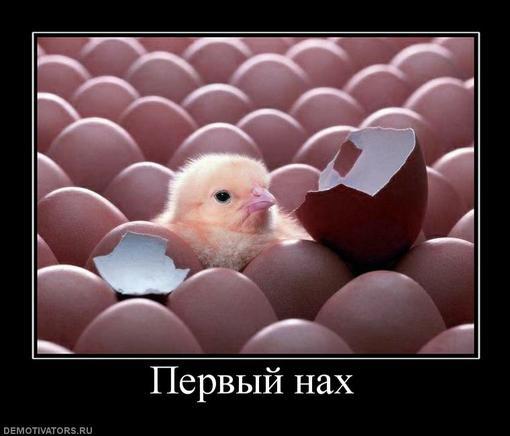 ПредисловиеСегодня я специально зарегистрировался на канобу.ру (до этого ограничивался лишь подпиской на youtube) чт ... - Изображение 1
