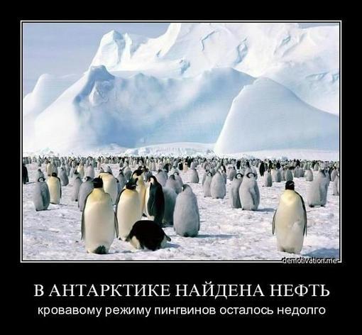 Пост в «Паб» от 02.11.2011 - Изображение 1