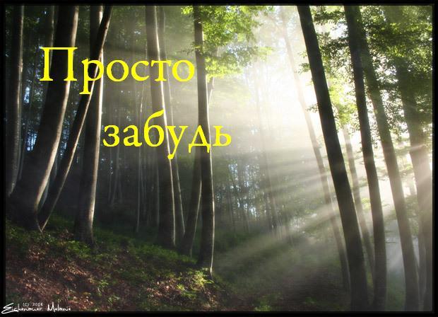 Он бежал между деревьев Анататского леса, бежал, падая и спотыкаясь, не думая ни о чем кроме своего спасения. Где то ... - Изображение 1