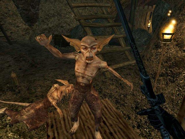 Журналисты узнали об анонсе The Elder Scrolls Online - Изображение 1