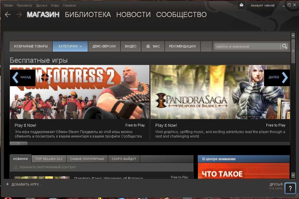Небольшой обзор бесплатных (free to play) игр в Steam.  Экшен Team Fortress 2 и Pandora Saga: Weapons of Balance.  h ... - Изображение 1