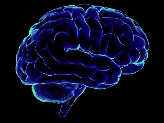 В сегодняшнем посте хочется рассказать о некоторых видах памяти и о совершеннейшем компьютере:     Действительно по  ... - Изображение 3