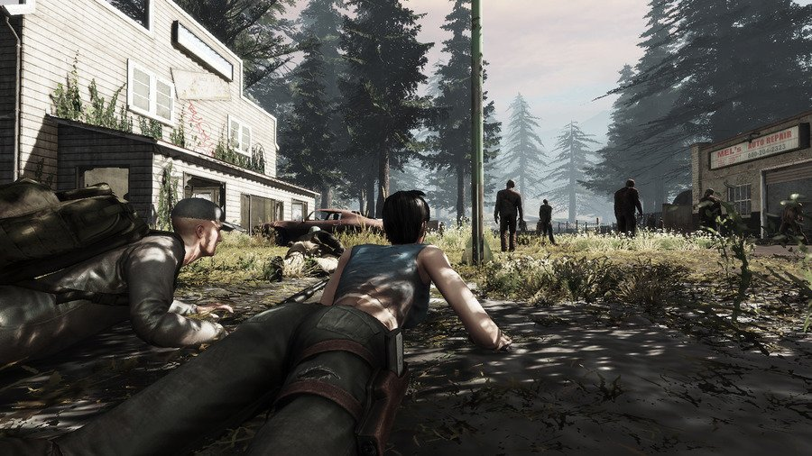 Hammerpoint Interactive Releases Statement About The War Z.