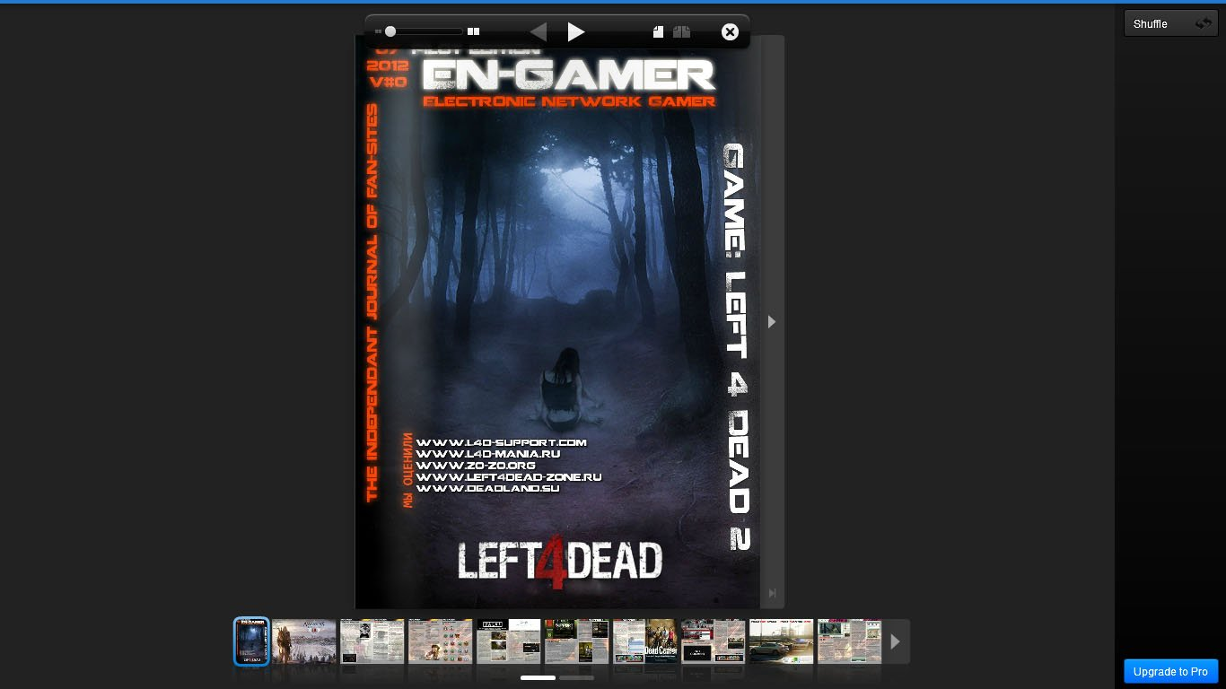 Electronic Network Gamer - Группа людей, которая занялась оценкой игровых фан-сайтов, а так же написанием разных ста ... - Изображение 1