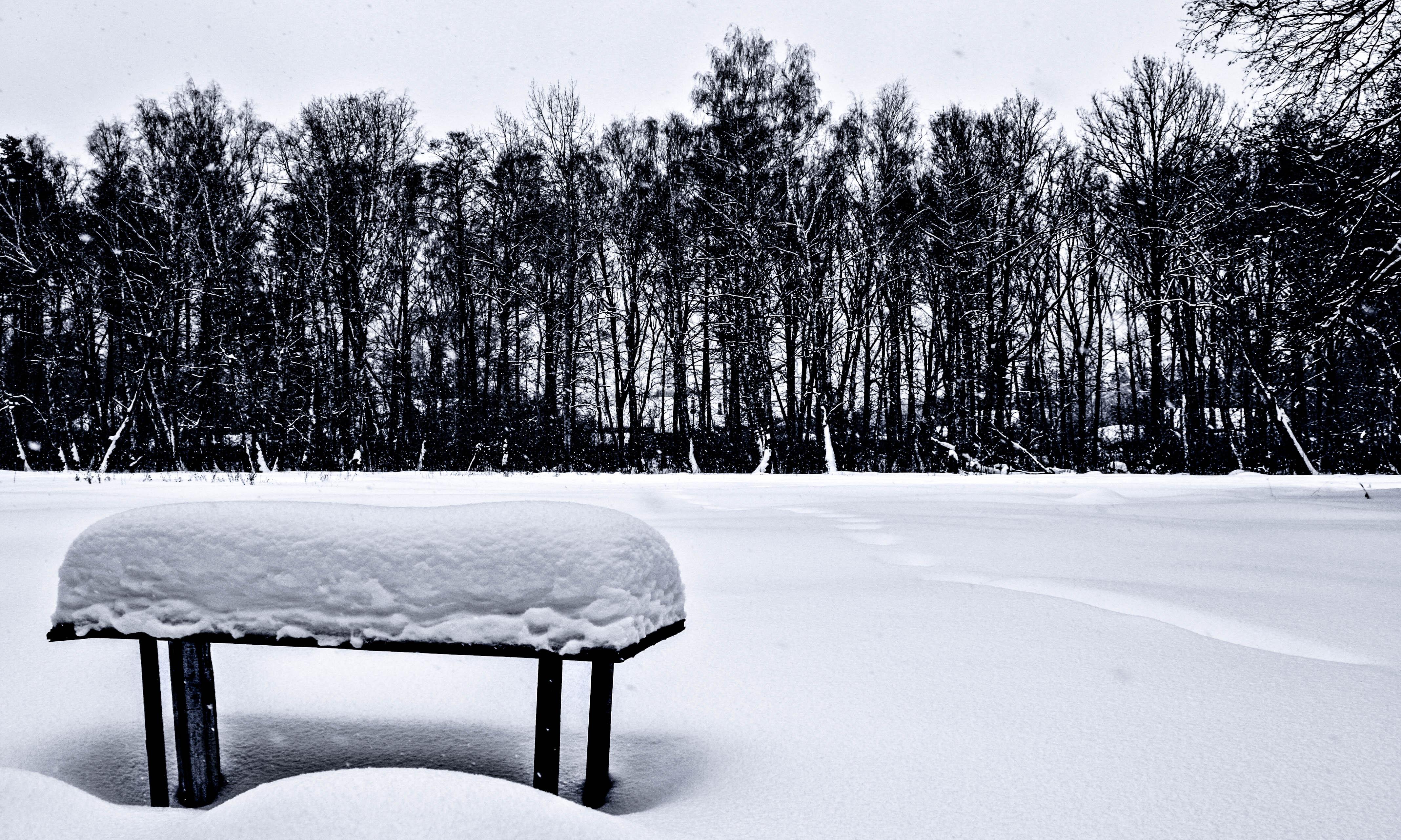 Наконец-то с неба посыпался снег! В связи с этим хочу поделиться своими прошлогодними фото по теме... - Изображение 1