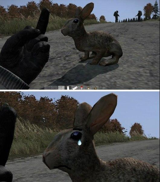 DayZ не любит животных - Изображение 1