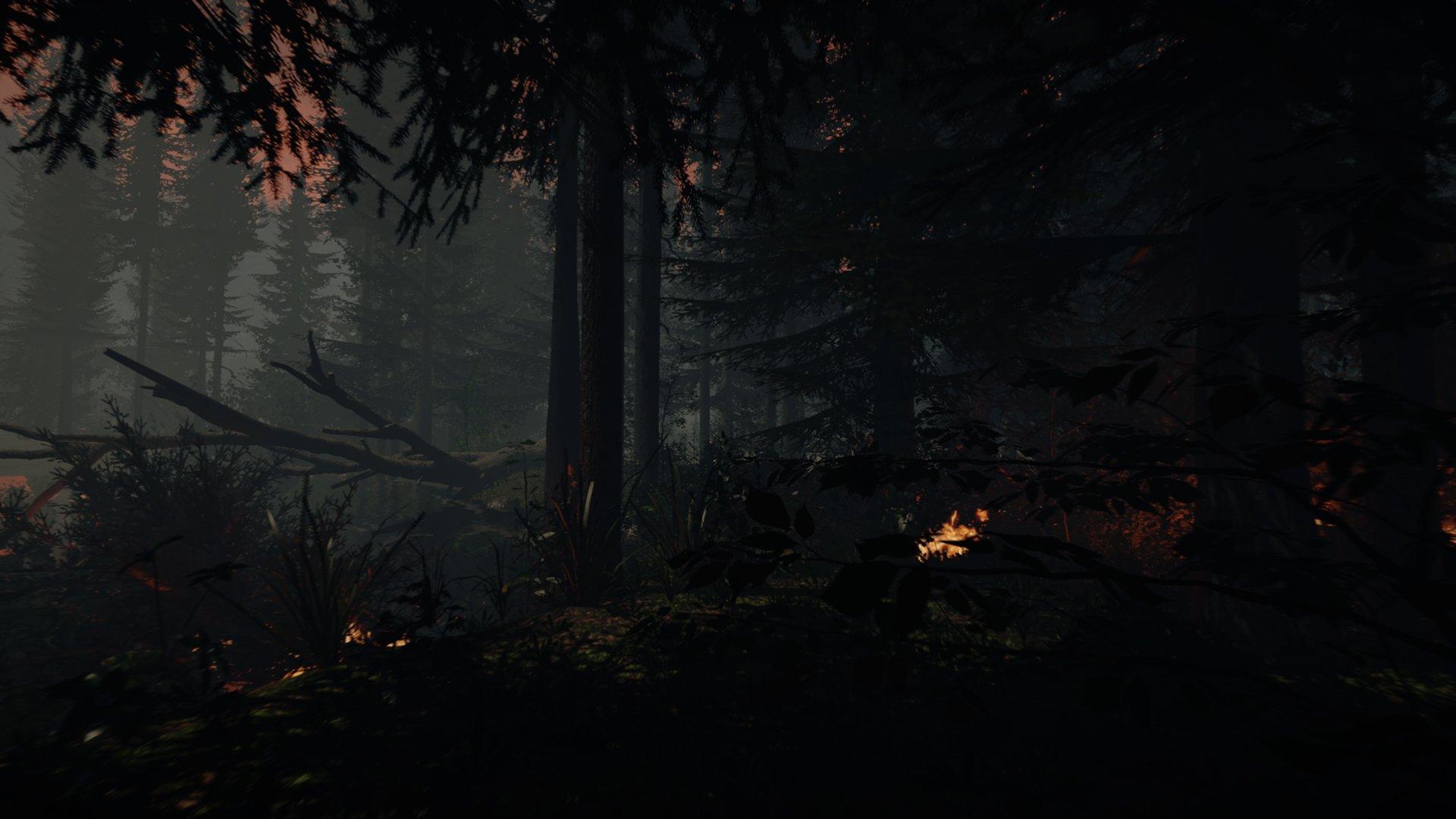 The Forest новые скриншоты - Изображение 6