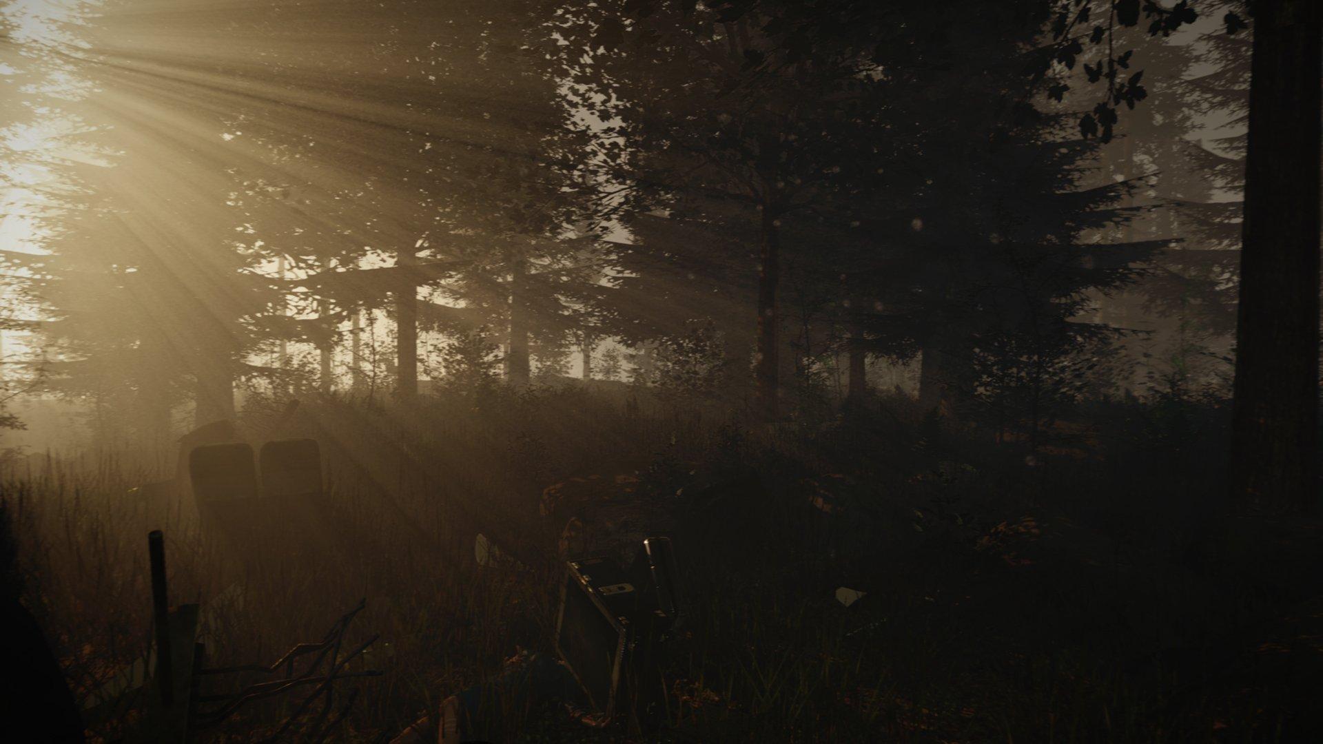 The Forest новые скриншоты - Изображение 4