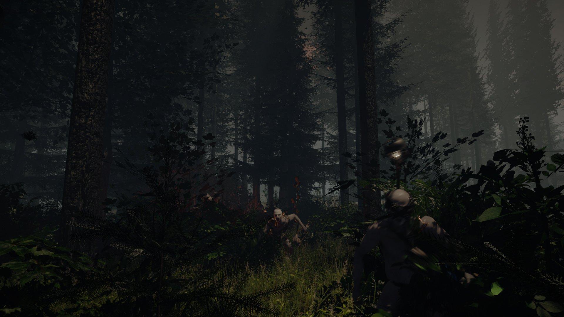 The Forest новые скриншоты - Изображение 7