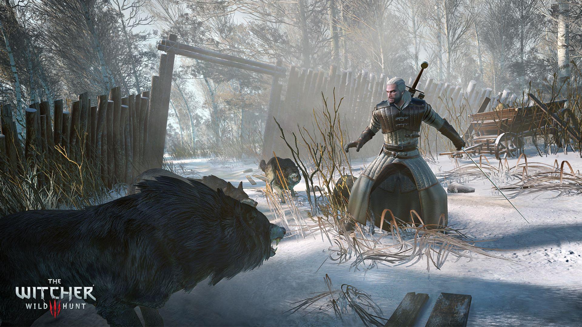 The Witcher 3: Wild Hunt на «Игромир 2014»       Впервые игровой процесс будет представлен полностью на русском яз ... - Изображение 3