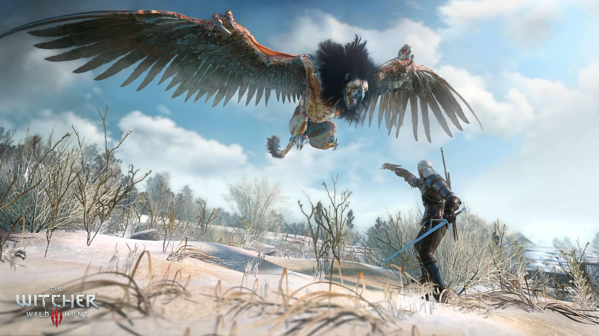 The Witcher 3: Wild Hunt на «Игромир 2014»       Впервые игровой процесс будет представлен полностью на русском яз ... - Изображение 4
