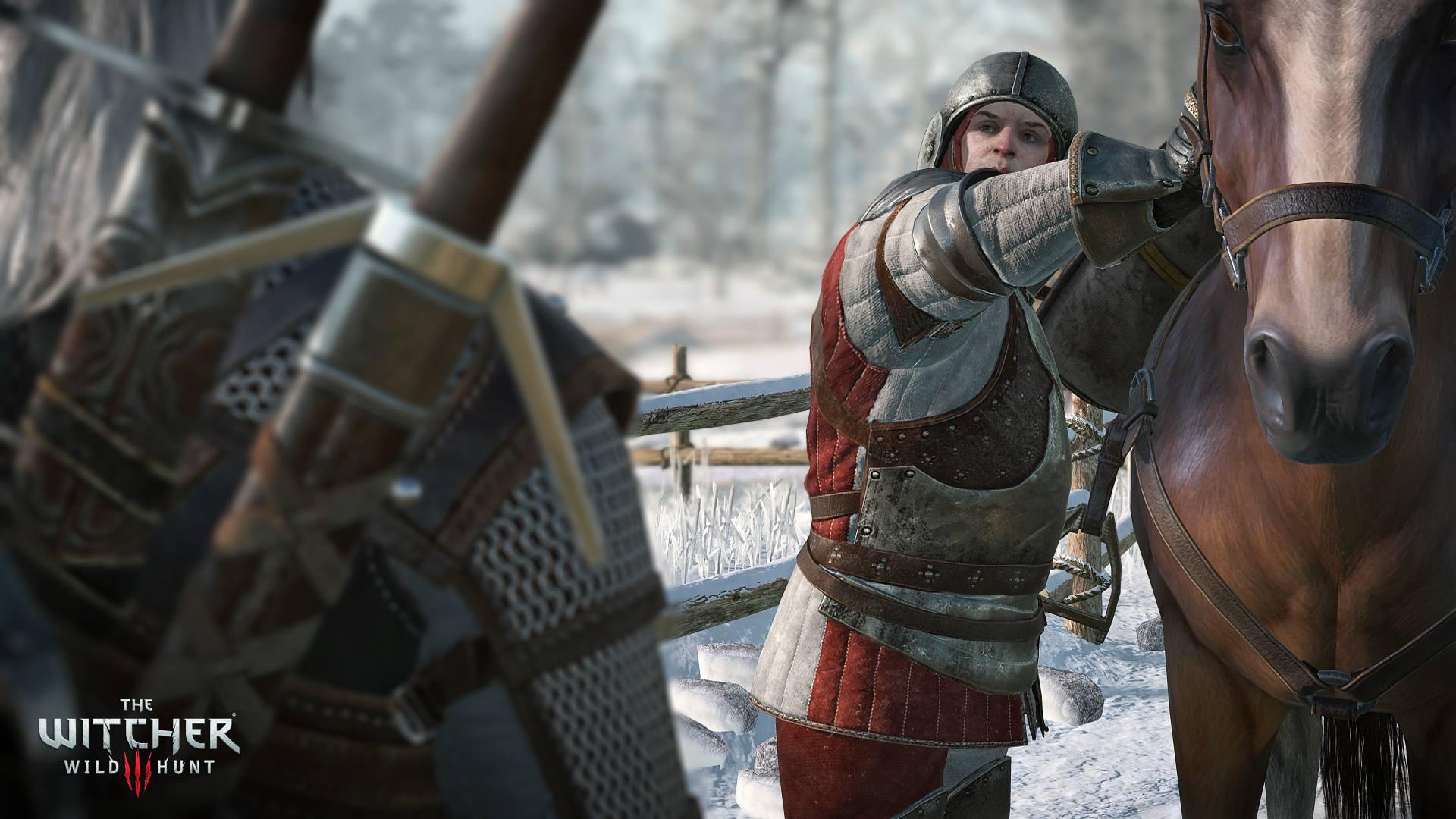 The Witcher 3: Wild Hunt на «Игромир 2014»       Впервые игровой процесс будет представлен полностью на русском яз ... - Изображение 5