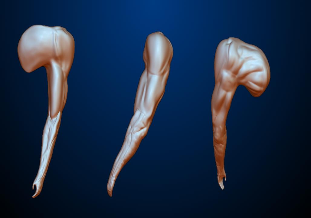 Human arm - Изображение 1