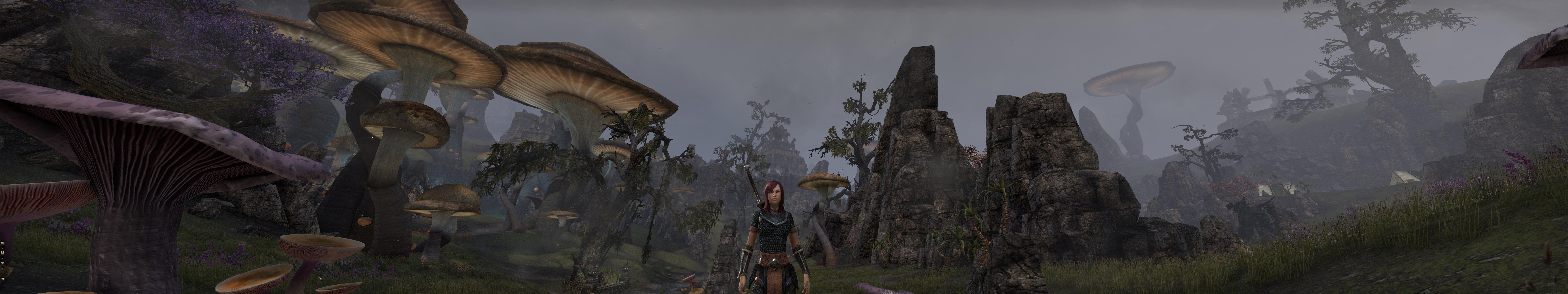 Пачка скриншотов из The Elder Scrolls Online на максимальных настройках в разрешении 7680x1440 - Изображение 12