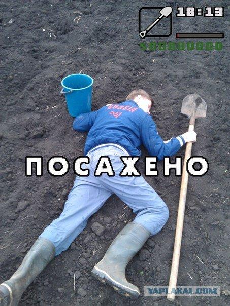 )  - Изображение 1