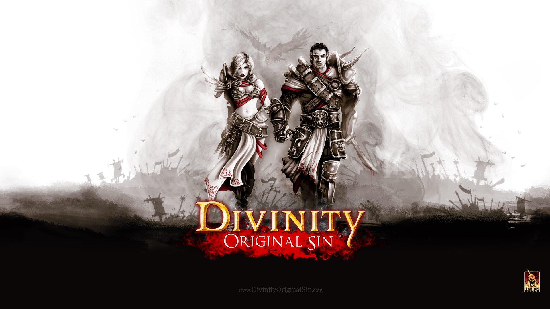 Нужен напарник в Divinity Original Sin - Изображение 1