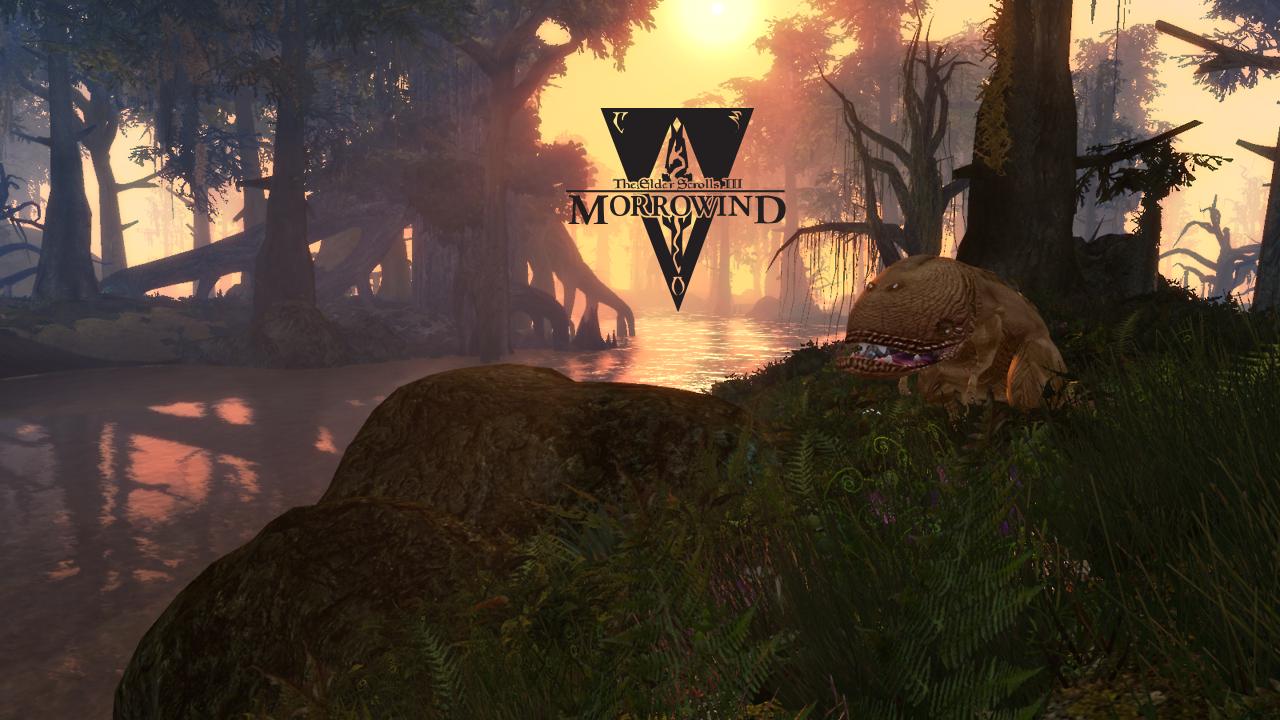 Morrowind Artbook - Изображение 1
