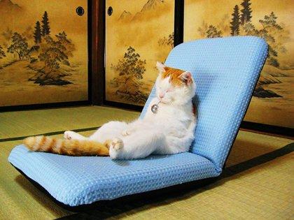 Управление своими эмоциями и настроением: способы медитации или Как остыть после плохой игры. - Изображение 3