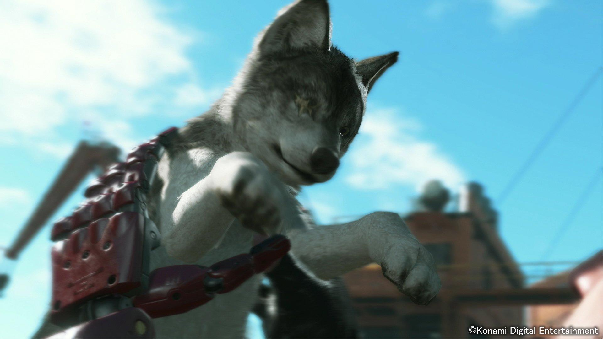 У Снейка ручной Волк! - Изображение 2