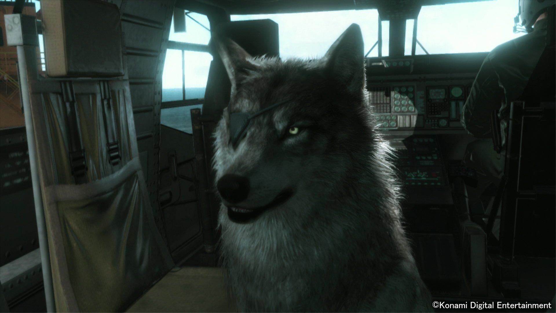 У Снейка ручной Волк! - Изображение 1