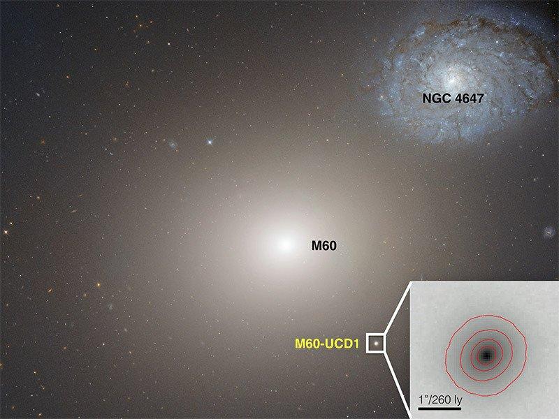 Сверхмассивная чёрная дыра в центре маленькой галактики - Изображение 1