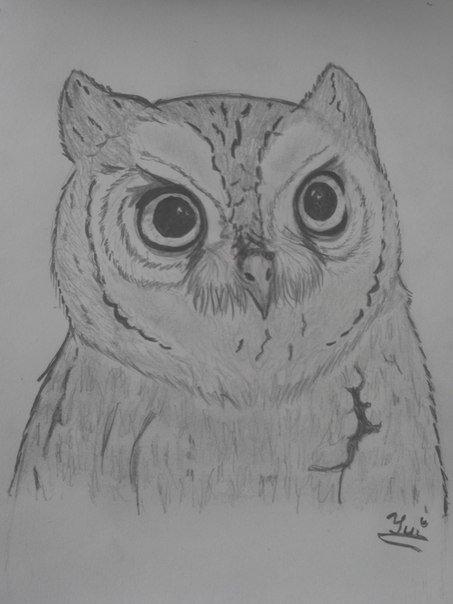 Моя подруга нарисовала Сову, срисовывала с пикабу фотографии. Отсканированный рисунок    Реальный рисунок (фотка)   - Изображение 2