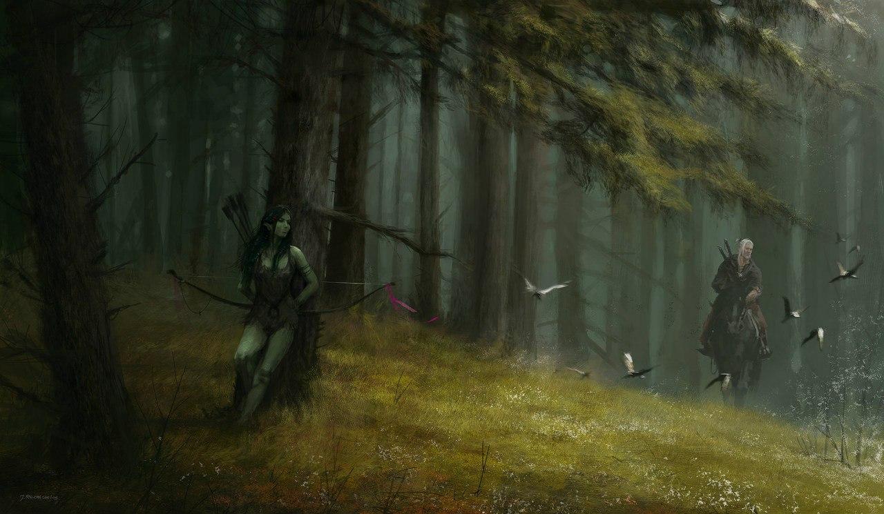Якуб Розальски и немного его Ведьмака - Изображение 4