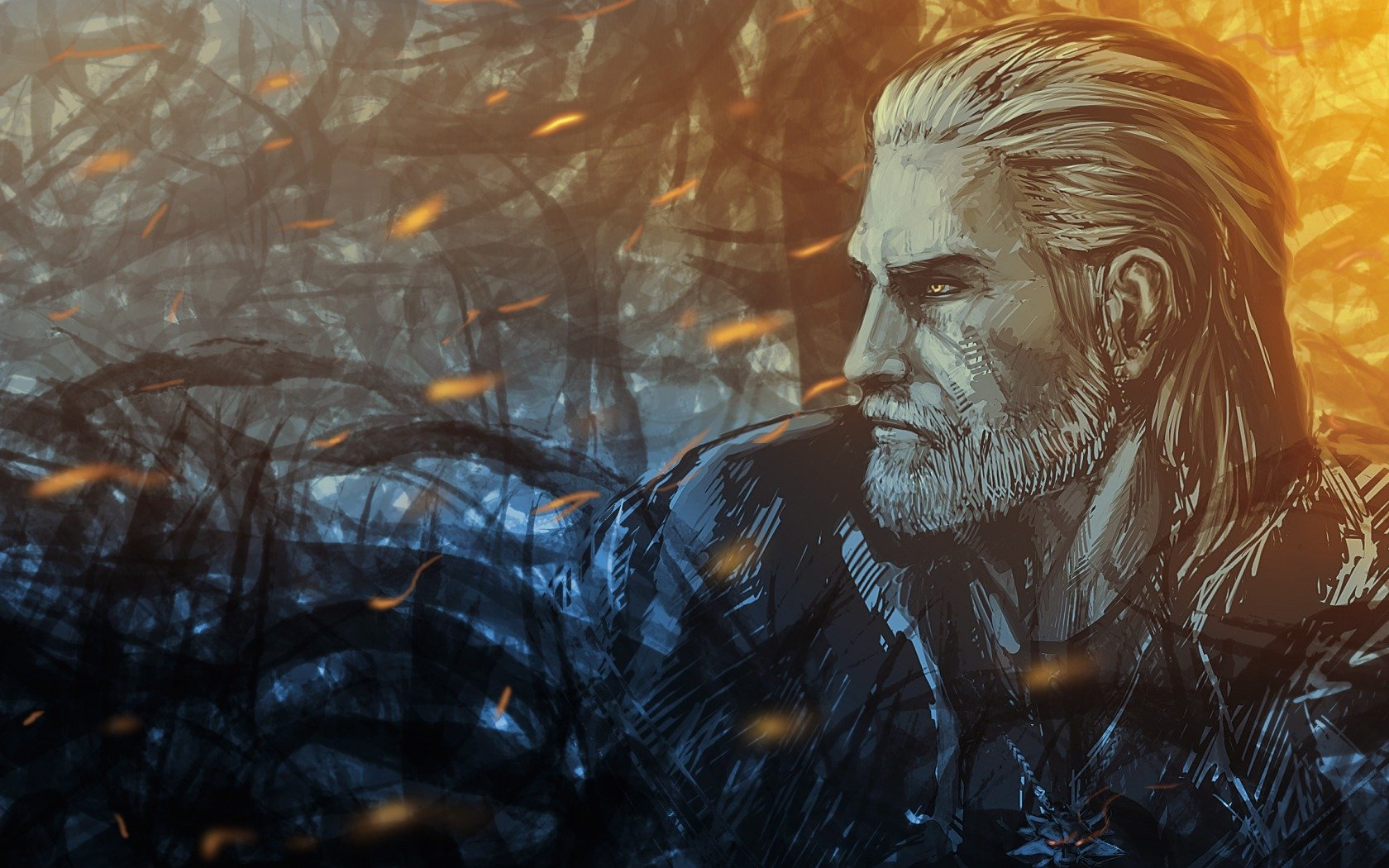 The witcher art