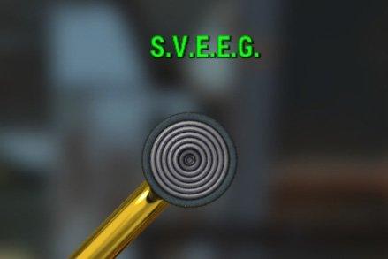 S.V.E.E.G. - Изображение 3