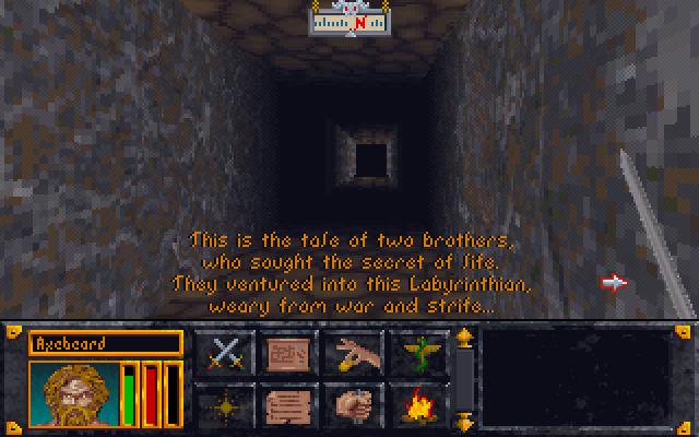[The Elder Scrolls] История серии от PC Gamer. Часть 1 - Arena и Daggerfall. - Изображение 4