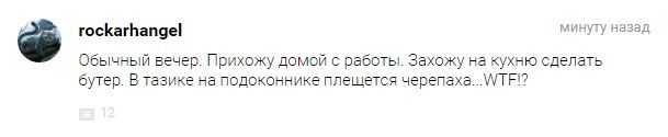 Итоги дня 17.03.2015 - Изображение 6