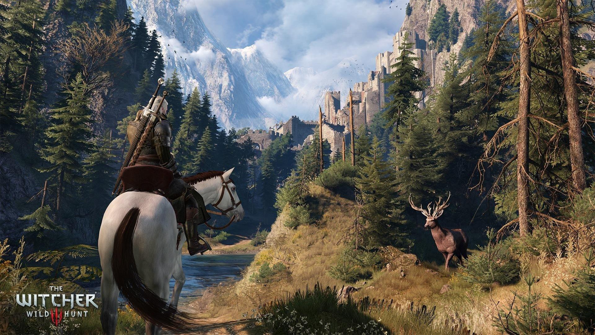 The Witcher 3: Wild Hunt. Все самое интересное за прошедшее время и новые факты.   Факты.    •Если вы хотите заработ ... - Изображение 10