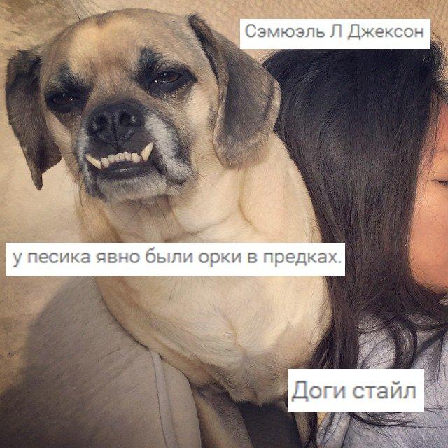 instagram: the next generation. (теперь сразу с комментариями) - Изображение 22