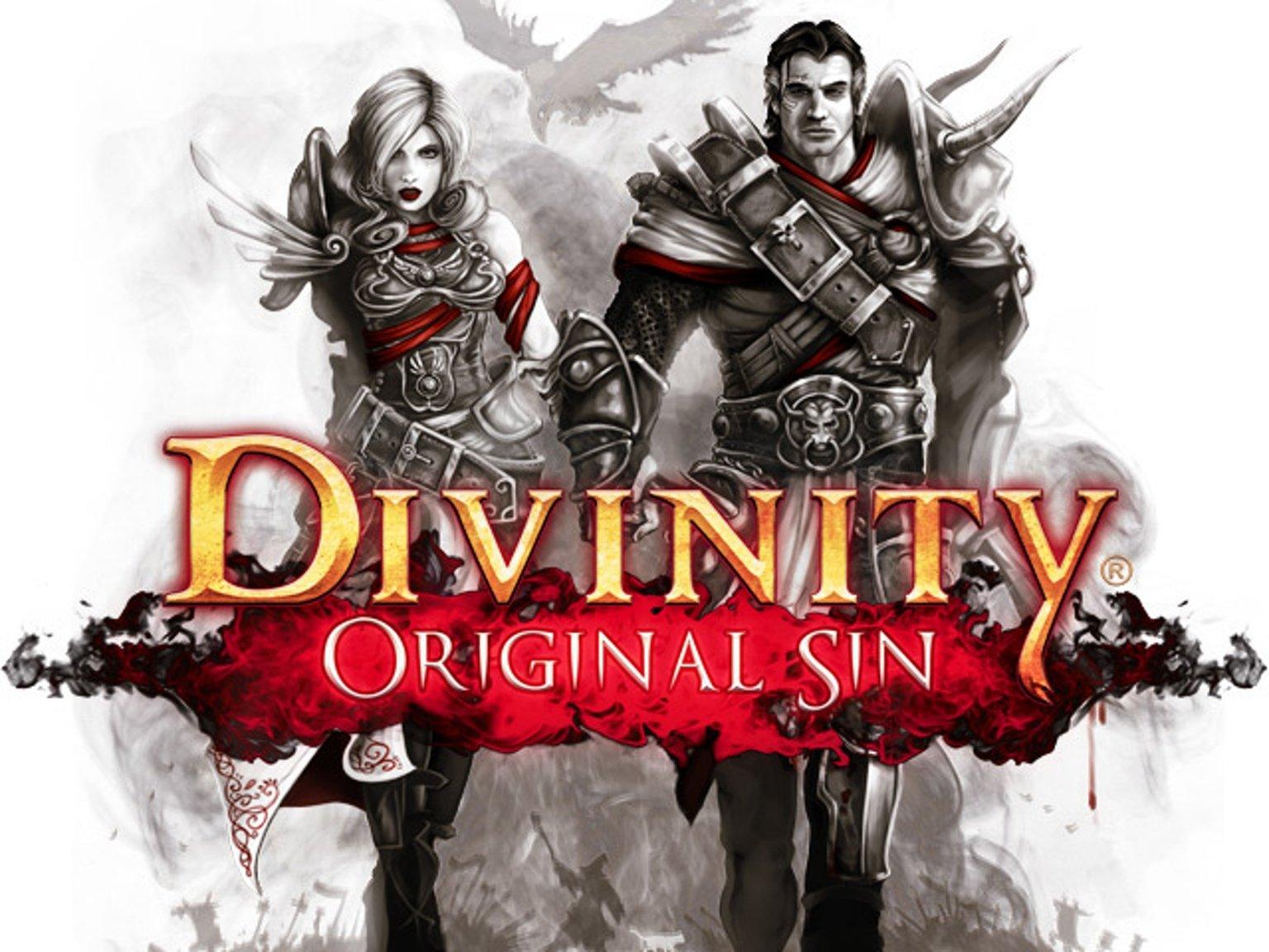 Divinity: Original Sin выйдет на Консолях! - Изображение 1