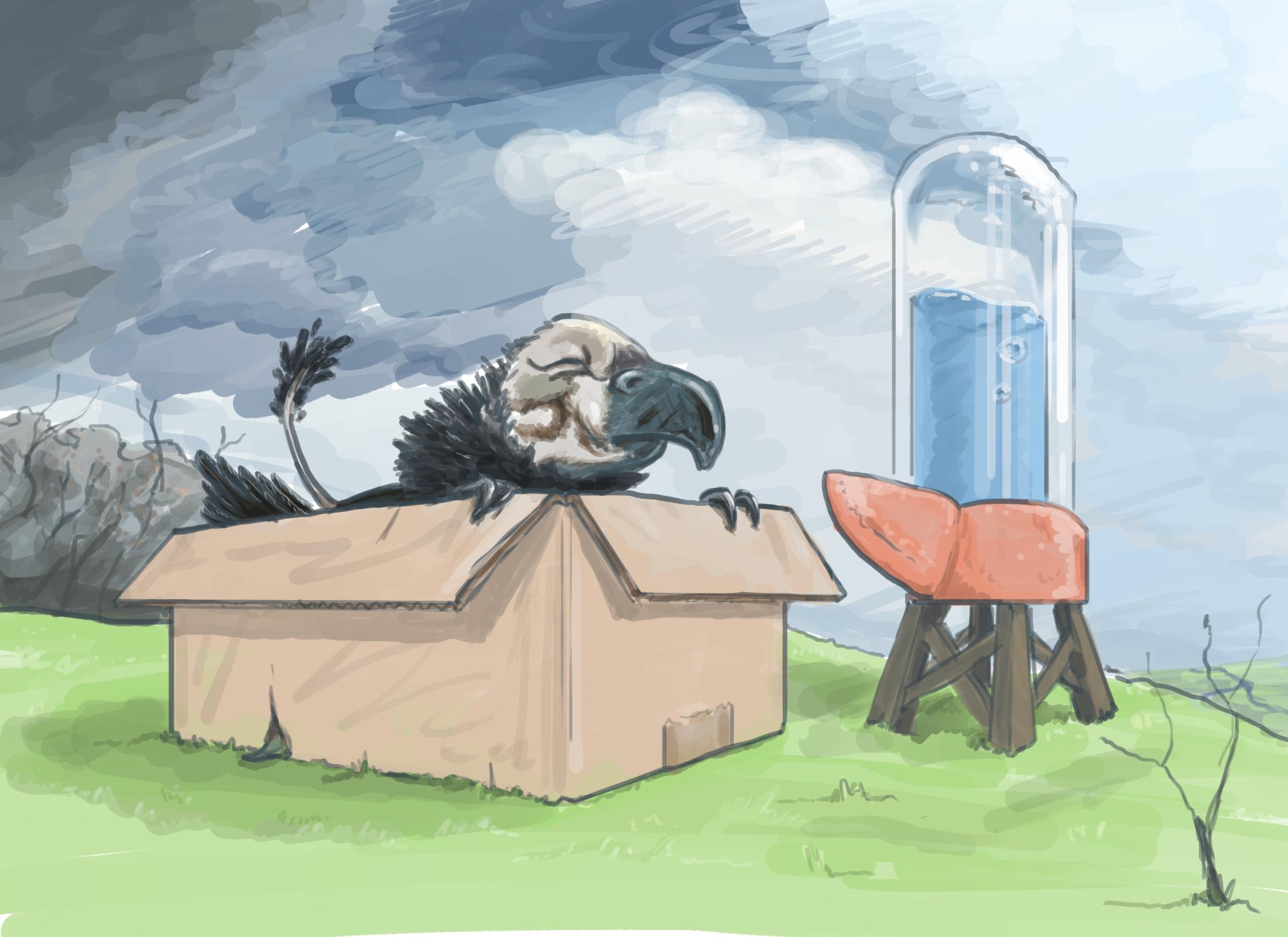 Поймай грифона+ Ведьмяук - Изображение 1