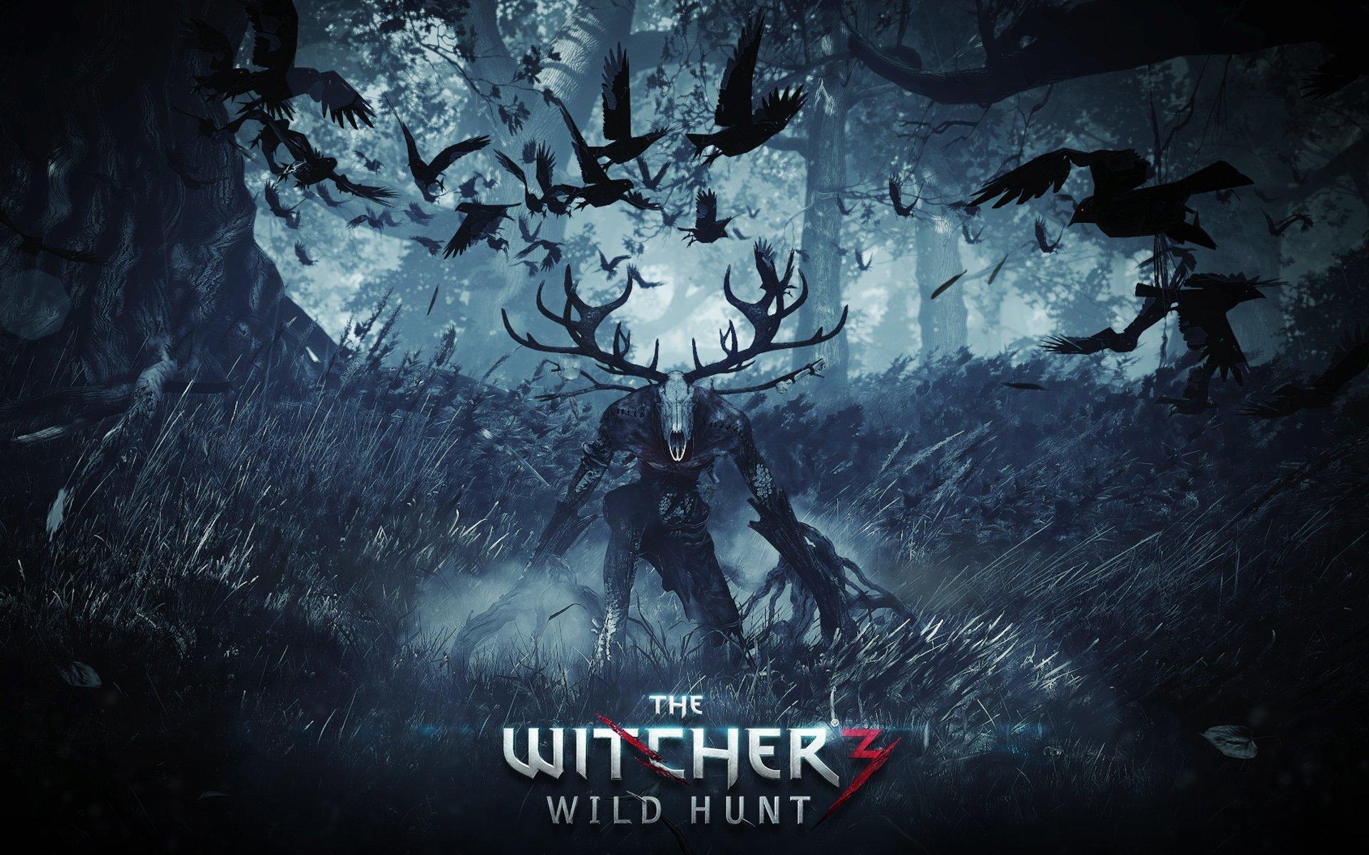 Видеообзор The Witcher 3: Wild Hunt  - Изображение 1