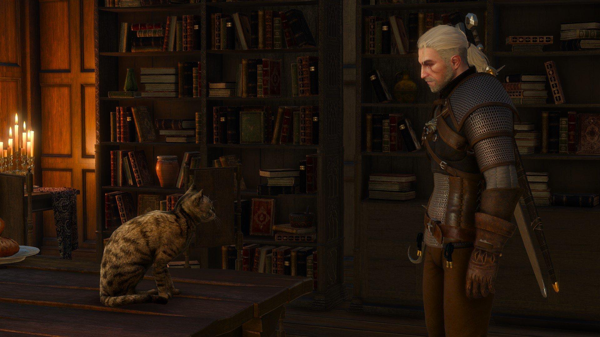 """The Witcher 3: Wild Hunt. Бесплатное DLC 13.   На этой недели выйдет только одно дополнение!   """"Where the Cat and Wo ... - Изображение 1"""