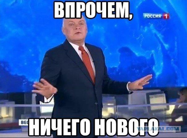 Клюква detected! - Изображение 10
