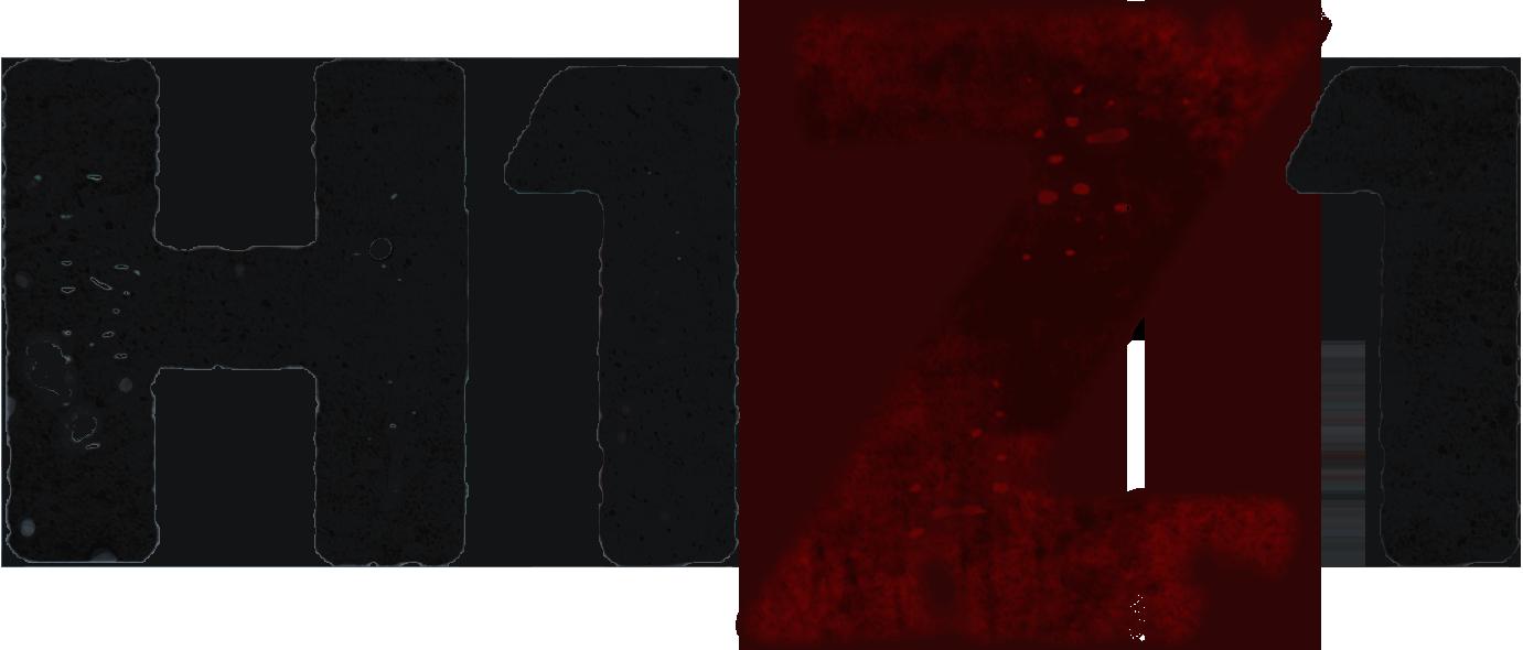 Zombie MMO мечты - Изображение 7