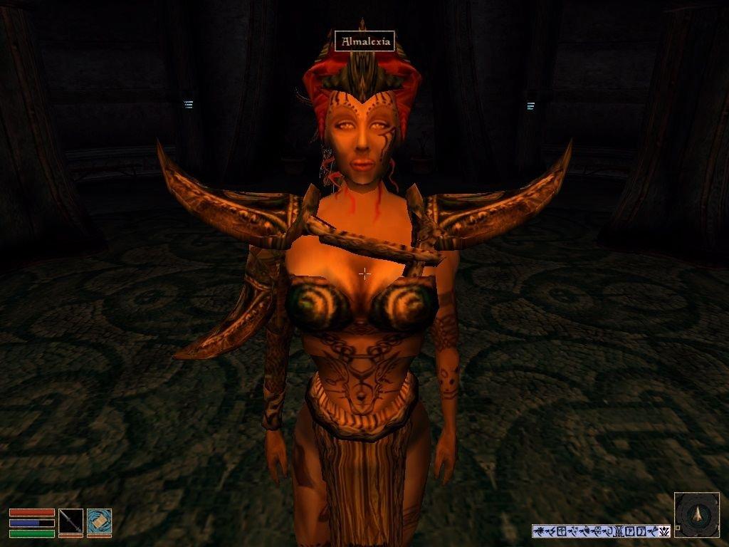 История в картинках (The Elder Scrolls) - Изображение 6
