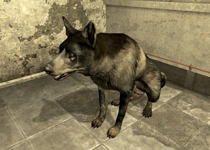 Мафия #8 | Fallout | Итоги 2 дня. 2 ночь - Изображение 3
