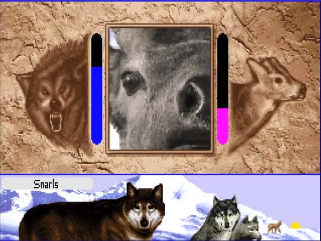А вы играли в… Wolf? - Изображение 10