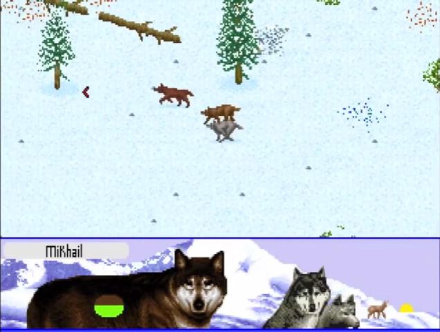 А вы играли в… Wolf? - Изображение 3