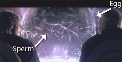 Отвратный Эпизод III - Revenge of the Sith - Изображение 8