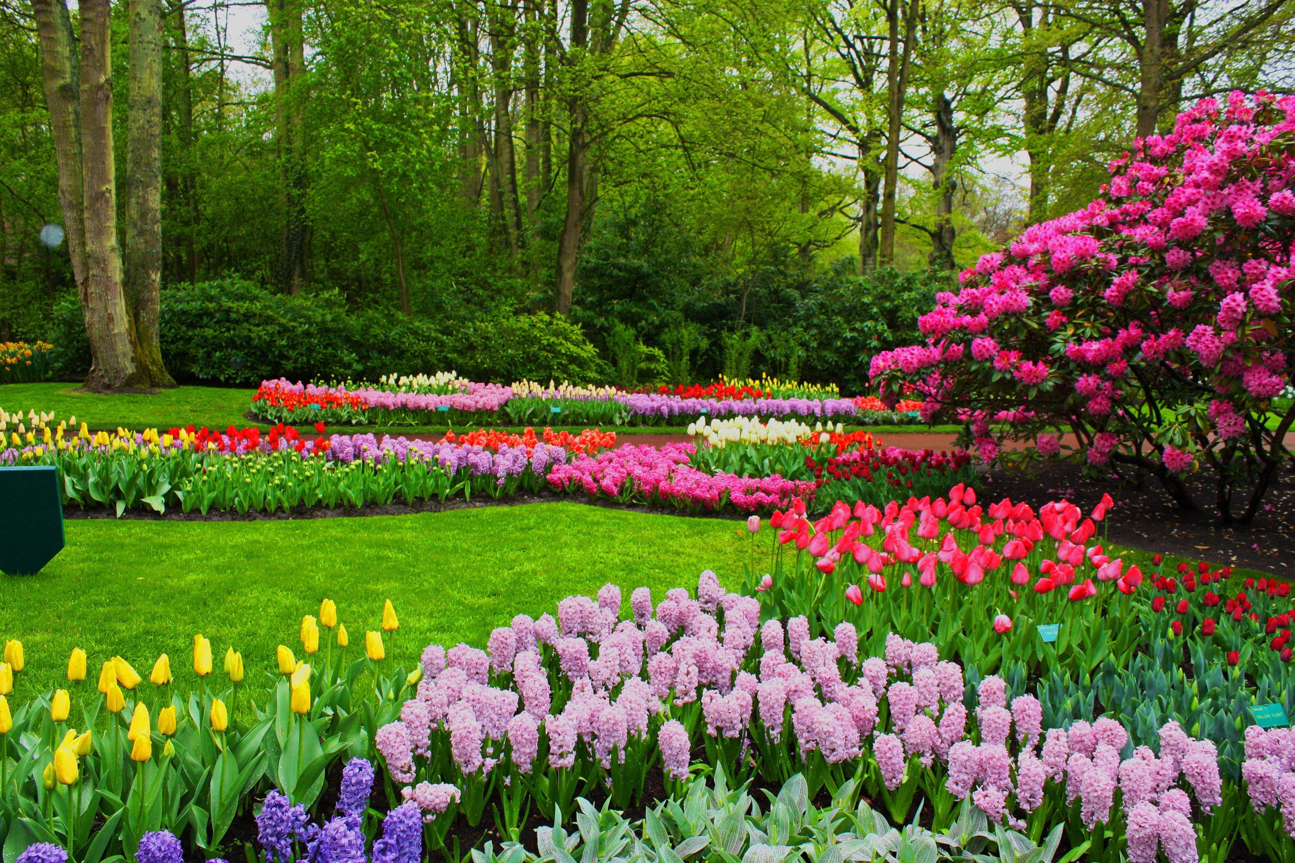 Весна... Подборка фото.  - Изображение 13